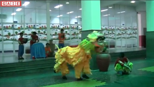 IPS's Lion Dance Festival Welcome Mid Autumn 2013 Part 2
